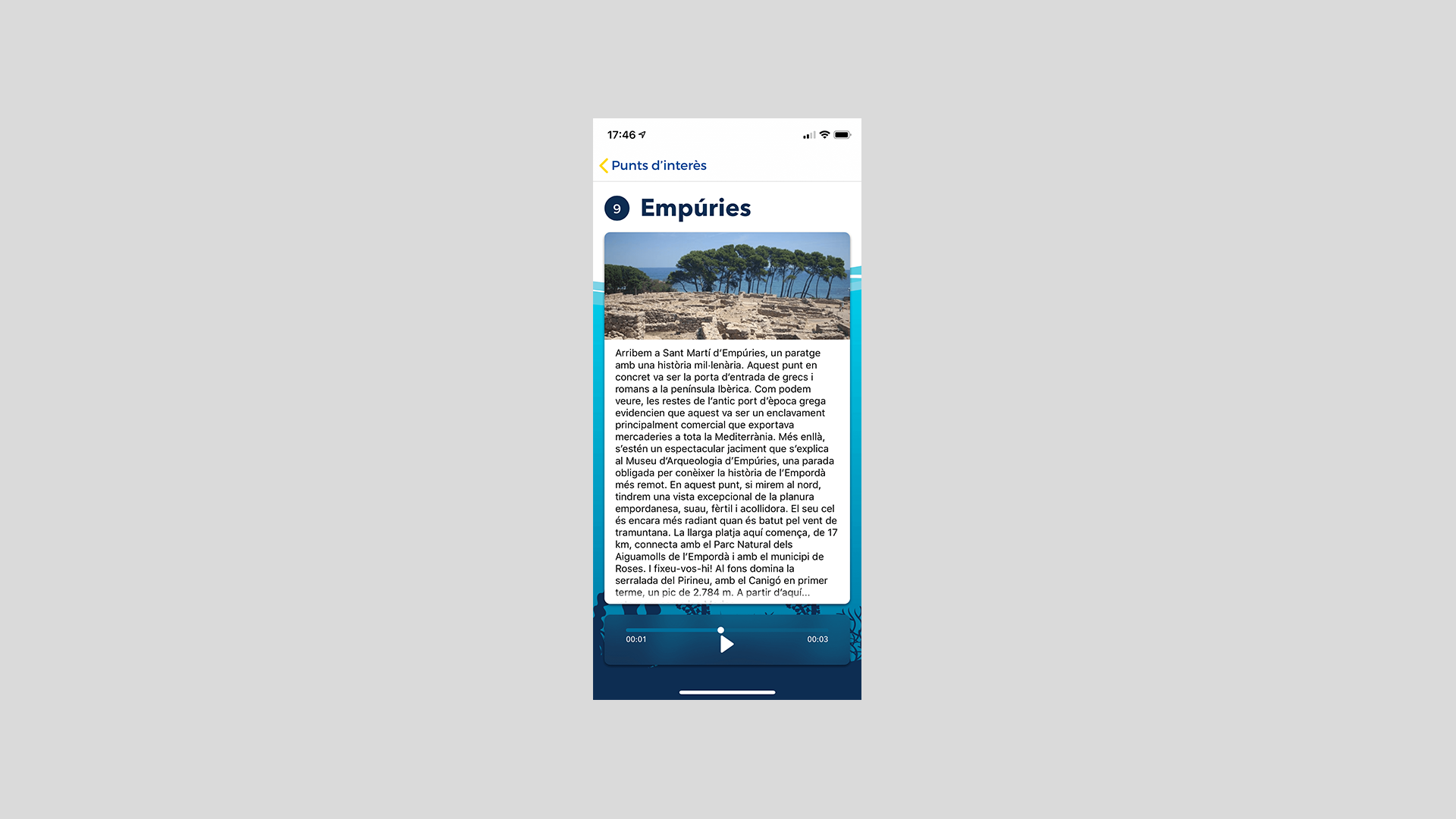 Information section (iOS App and Android App)
