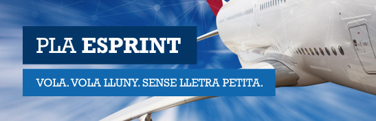 Pla Esprint logo with a plane like a background