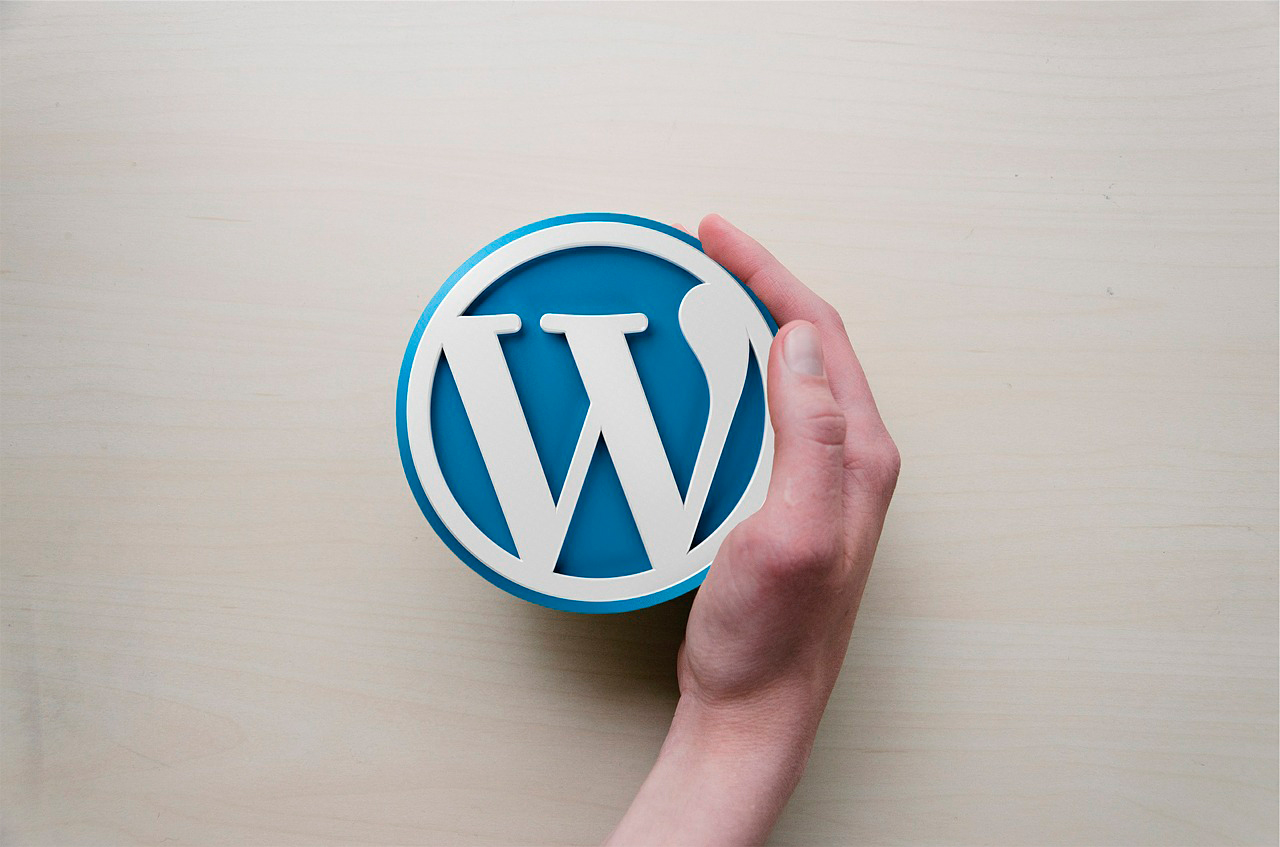 Hand picking up the WordPress logo